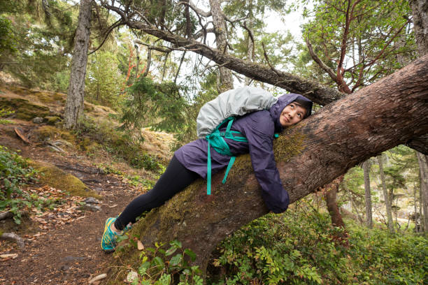 Solo, Young Woman Backpacker Resting, Hugging Tree in Forest CreativeContentBrief 686998871 Happiness in Nature      tree hugging stock pictures, royalty-free photos & images