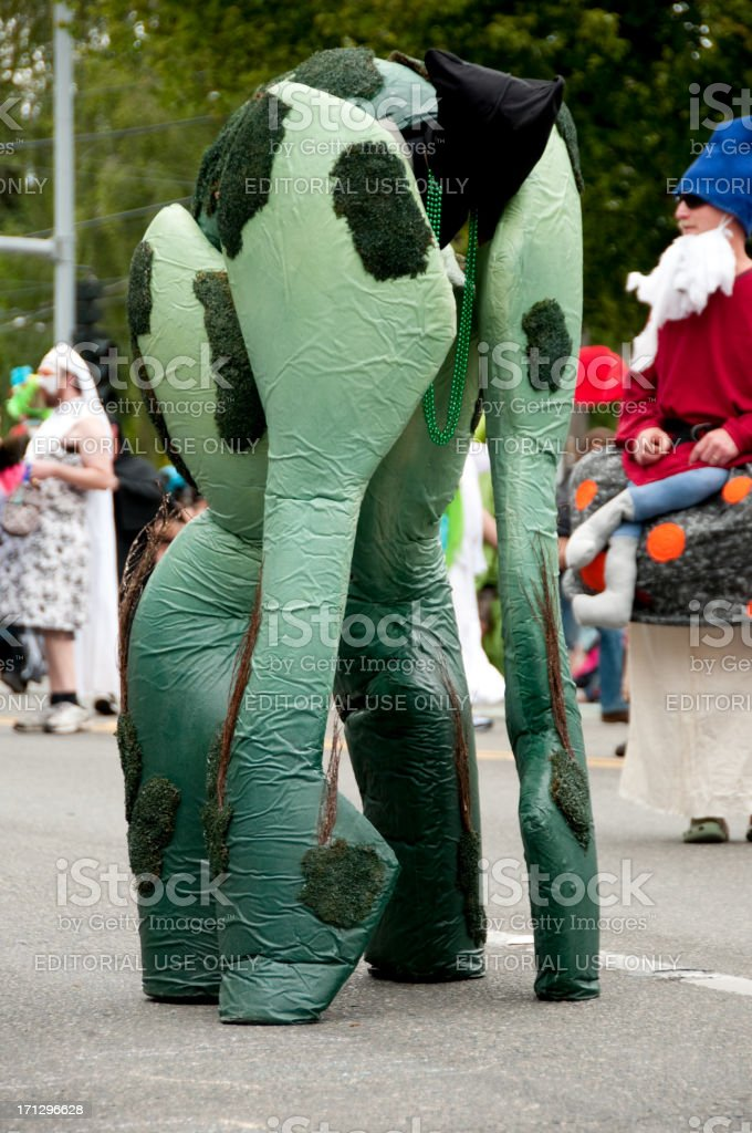 Solstice Parade stock photo