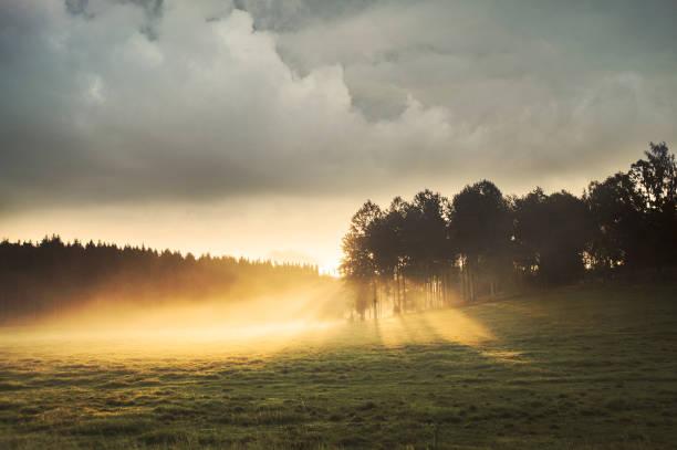 Soluppgång över Fält stock photo