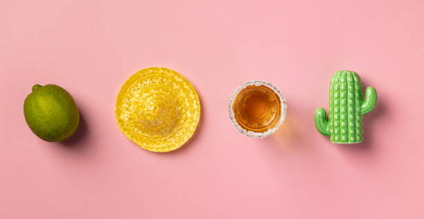 Sombrero, lime, tequila and cactus on pink background. stock photo