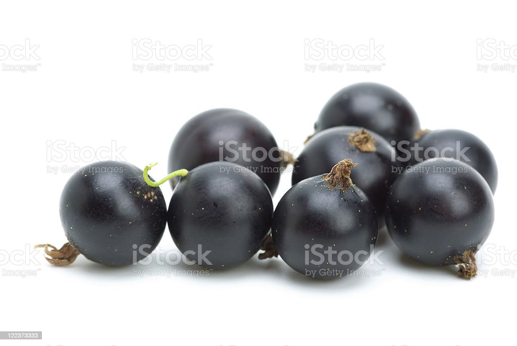 Some blackcurrants stock photo
