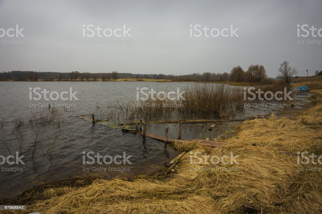 Some bushes inside the waters of Mozhayskoe sea flooded in spring stock photo