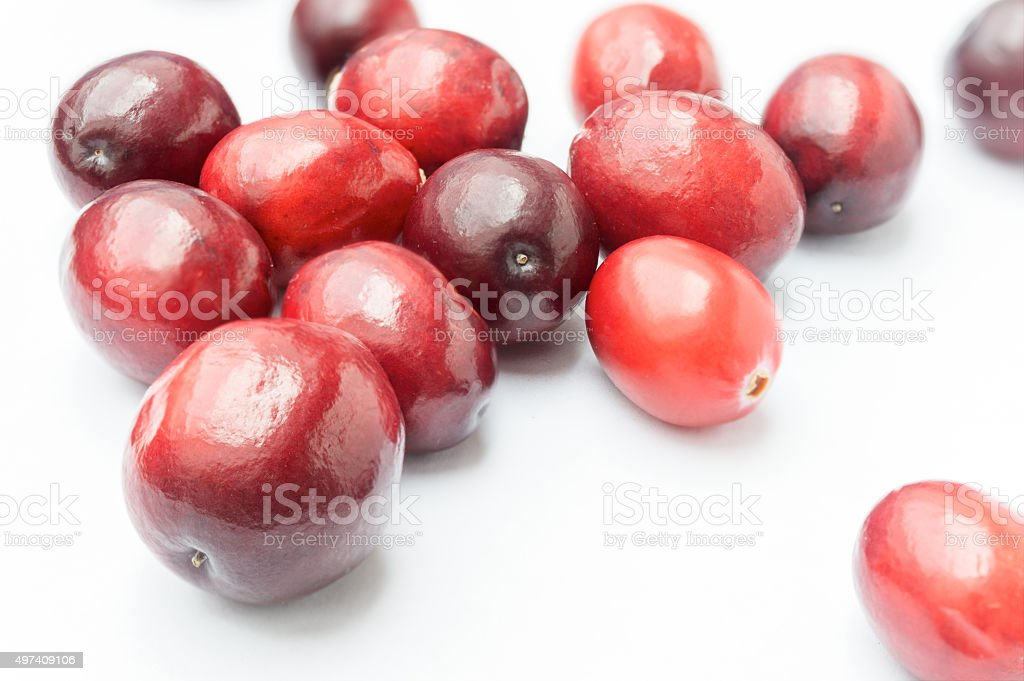 Some Fresh Cranberries on white background stock photo