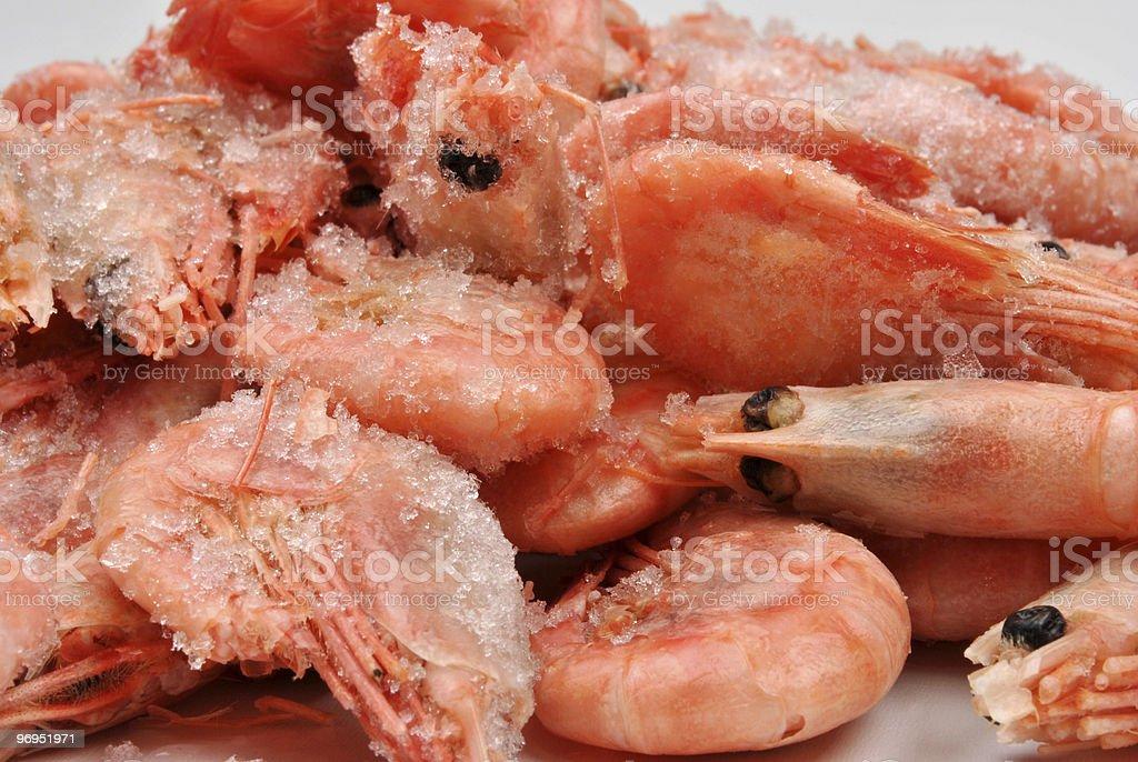 some fresh organic prawns before preparation royalty-free stock photo