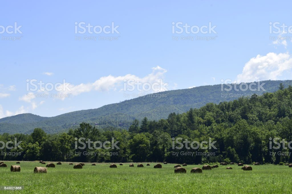 Some Hay Rolls In The Blue Ridge Mountains Valley Stock