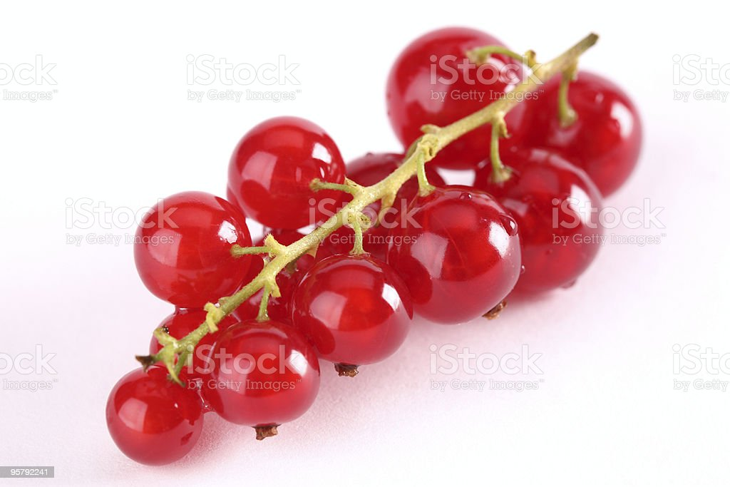 Some Red Currants stock photo