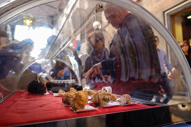 einige trüffel on sale während alba festival - pilze bestimmen stock-fotos und bilder