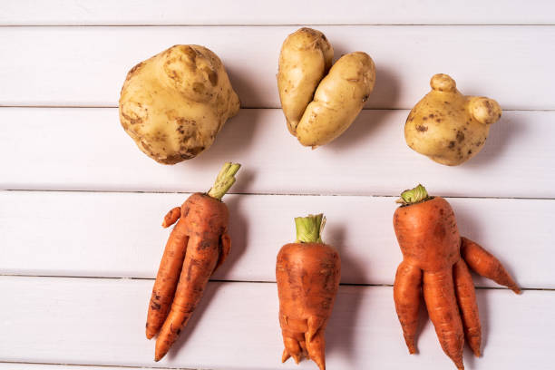 Some ugly curved carrots and potatoes on white wooden background. Flat lay Some ugly curved ogranic carrots and potatoes on white wooden background. imperfection stock pictures, royalty-free photos & images