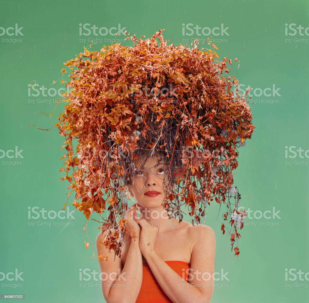 Somebody Needs A Haircut Stock Photo More Pictures Of Adult Istock