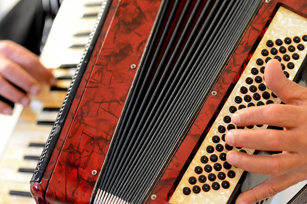 someone who plays the accordion - accordion stock photos and pictures