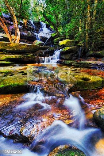 Scenic fresh rapid Somersby fall in rainforest of Australia near Gosford streaming down red mossy sandstone rocks in deep creek.