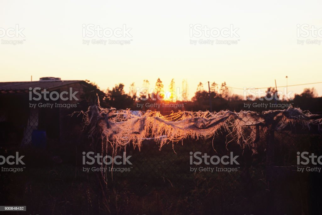 something broken in the sunset stock photo