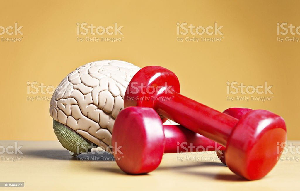 Something heavy on your mind? Weights with model brain stock photo