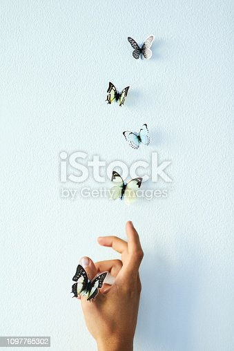 Studio shot of an unrecognizable person releasing butterflies into the air against a grey background