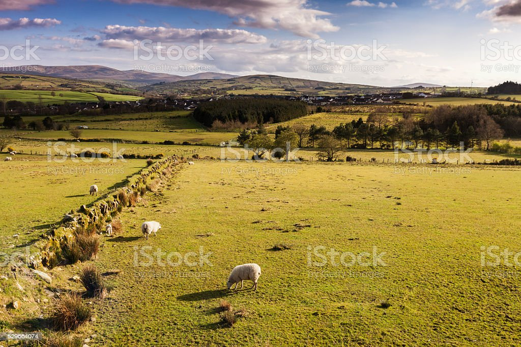 Somewhere in Northern Ireland stock photo