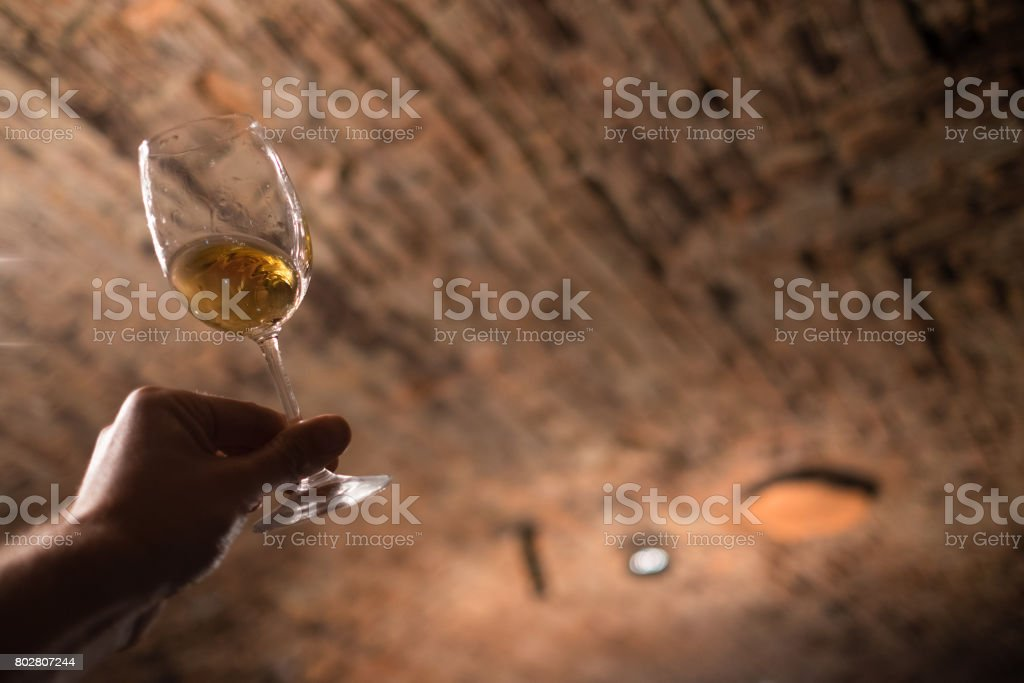 Sommelier enjoying the wine color in the old wine cellar stock photo