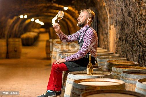 istock Sommelier in the wine cellar 590166606