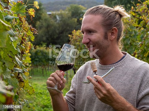 Man with glass of wine in vineyard