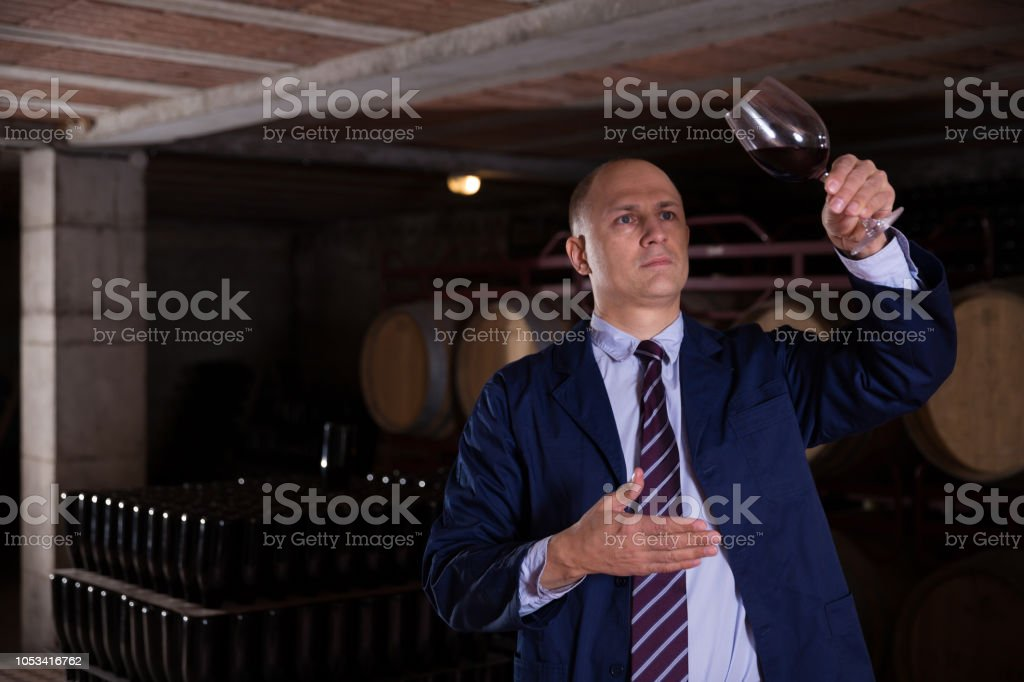 Sommelier tasting red wines in winery basement stock photo