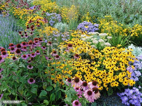 This is a perennial border in summerly colours, like a breaker of sea