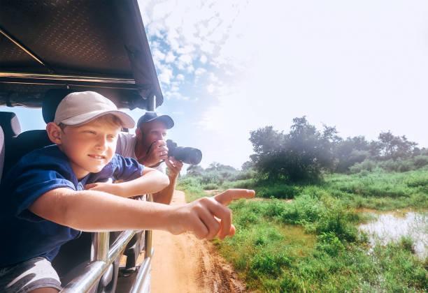 son och far såg djuren på safari i naturparken - safari bildbanksfoton och bilder