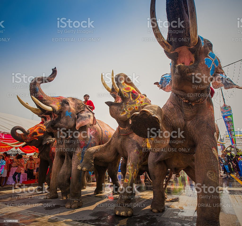 Songkran Festival is celebrated in a traditional New Year's Day stock photo