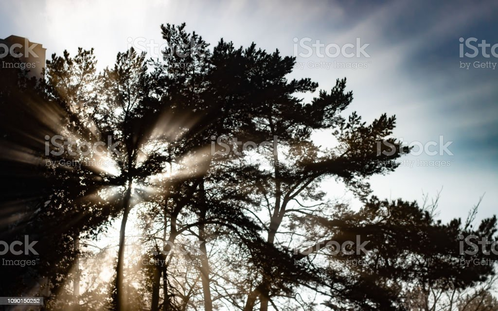 Sonnenstrahlen – Foto