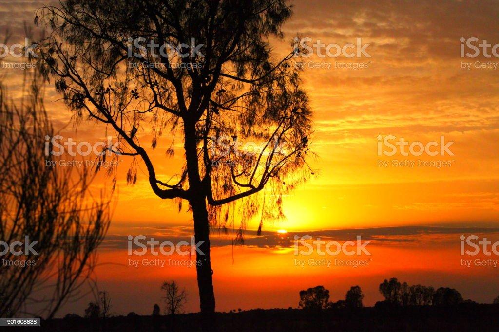 Sonnenuntergang In Australien stock photo