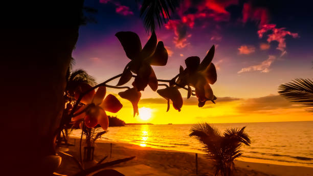 Sonnenuntergang - Sonnenaufgang stock photo