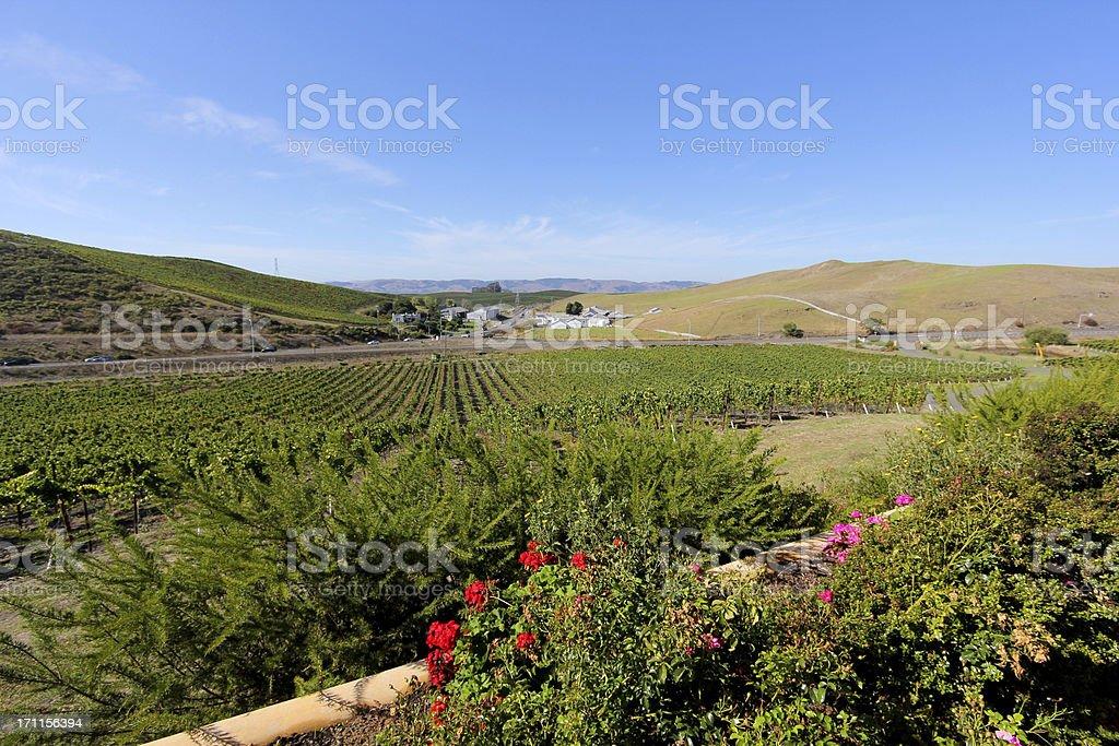 Sonoma in California, USA stock photo