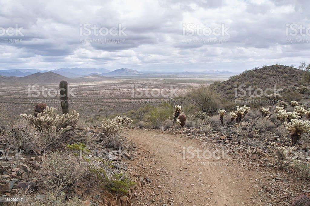 Sonoran Desert Preserve in Phoenix Arizona royalty-free stock photo