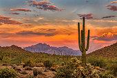 istock Sonoran Sunset 1296913338