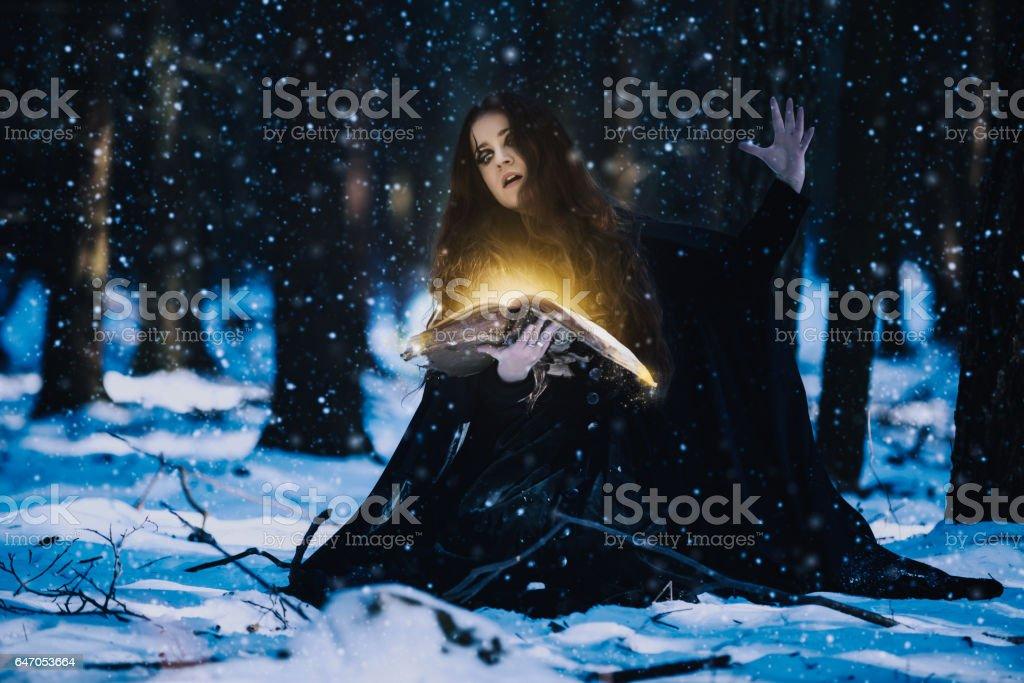 Sorceress Celebrating The Magic Of The Magic Books Stock