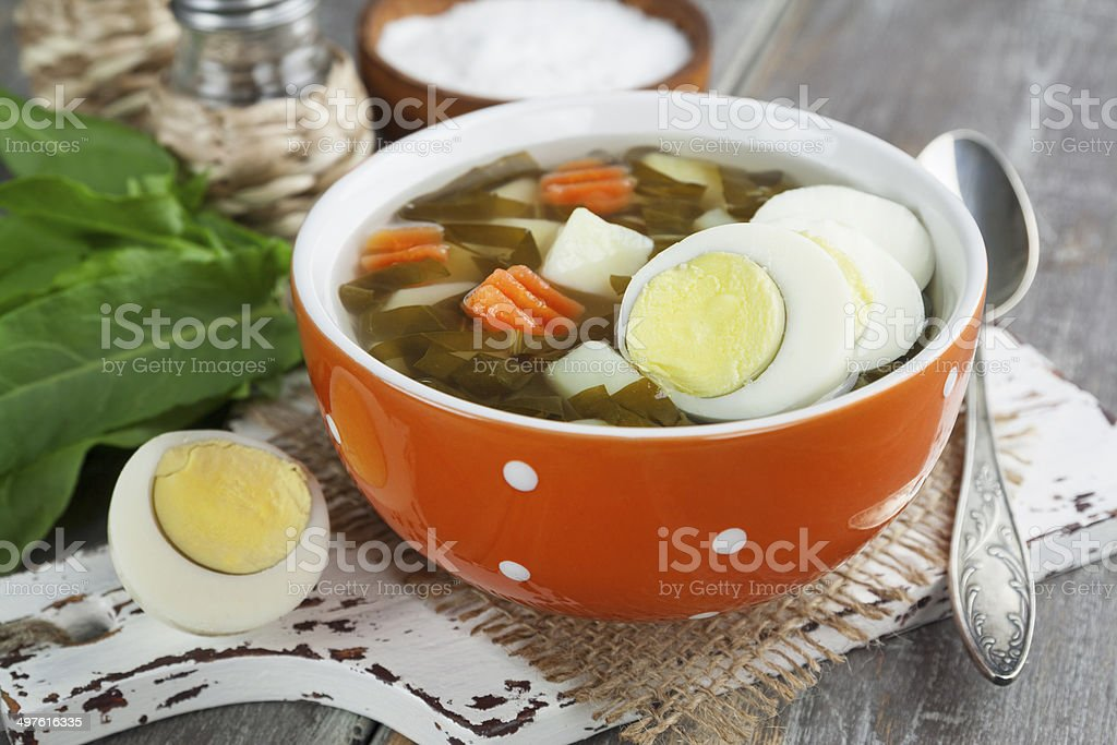 Sorrel soup with eggs royalty-free stock photo