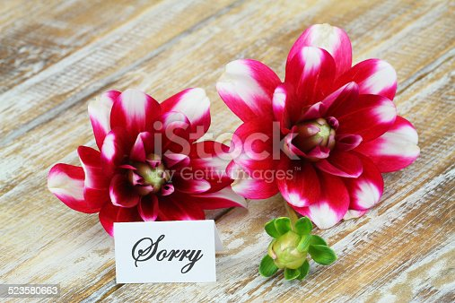 istock Sorry card with dahlia flowers on wooden surface 523580663