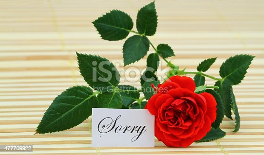 istock Sorry card with red wild rose 477709922