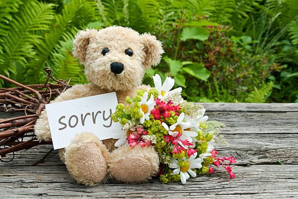 Es tut uns leid – Foto