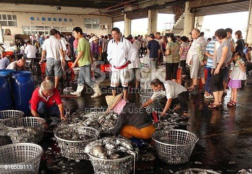 istock Sorting Fresh Squid Into Baskets 516509111
