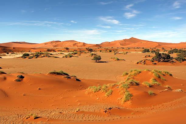 sossusvlei namibia - namib wüste stock-fotos und bilder