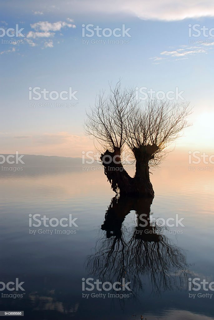 Sound of Trace on Water royalty-free stock photo
