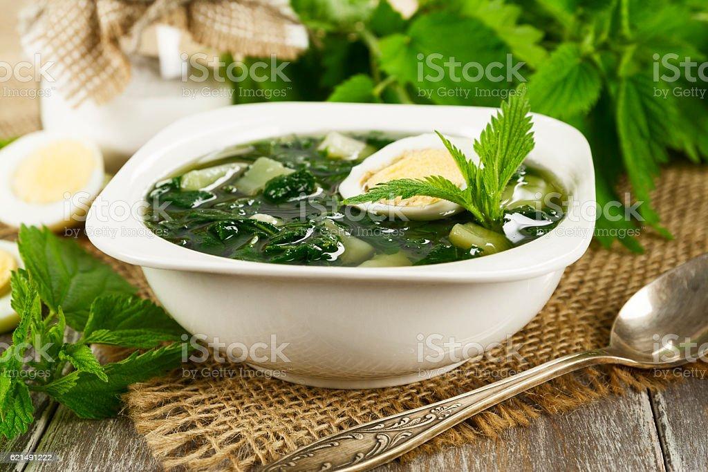 Soup of nettles - Lizenzfrei Blatt - Pflanzenbestandteile Stock-Foto
