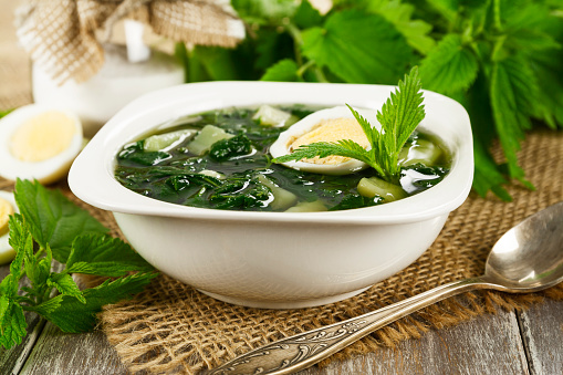 Soup Of Nettles Stockfoto und mehr Bilder von Blatt - Pflanzenbestandteile