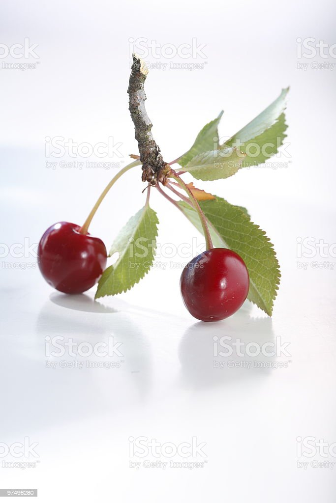 Sour cherry royalty-free stock photo