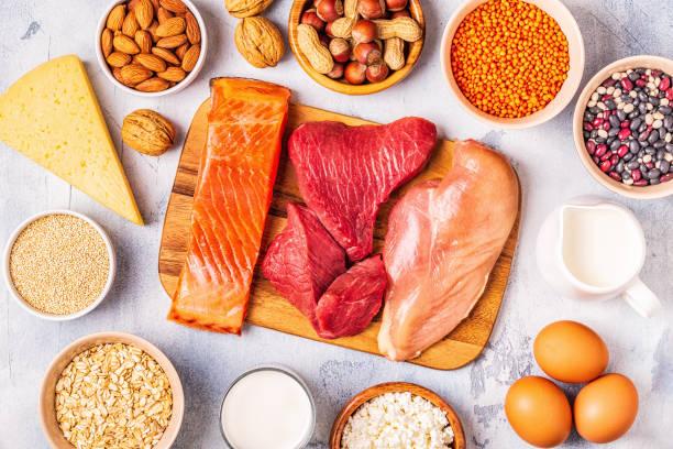źródła zdrowego białka - mięso, ryby, produkty mleczne, orzechy, rośliny strączkowe i ziarna - białko zdjęcia i obrazy z banku zdjęć