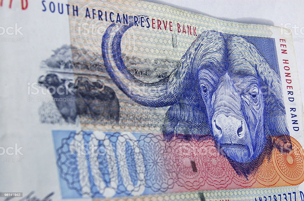 South africa buffalo banknote royalty-free stock photo