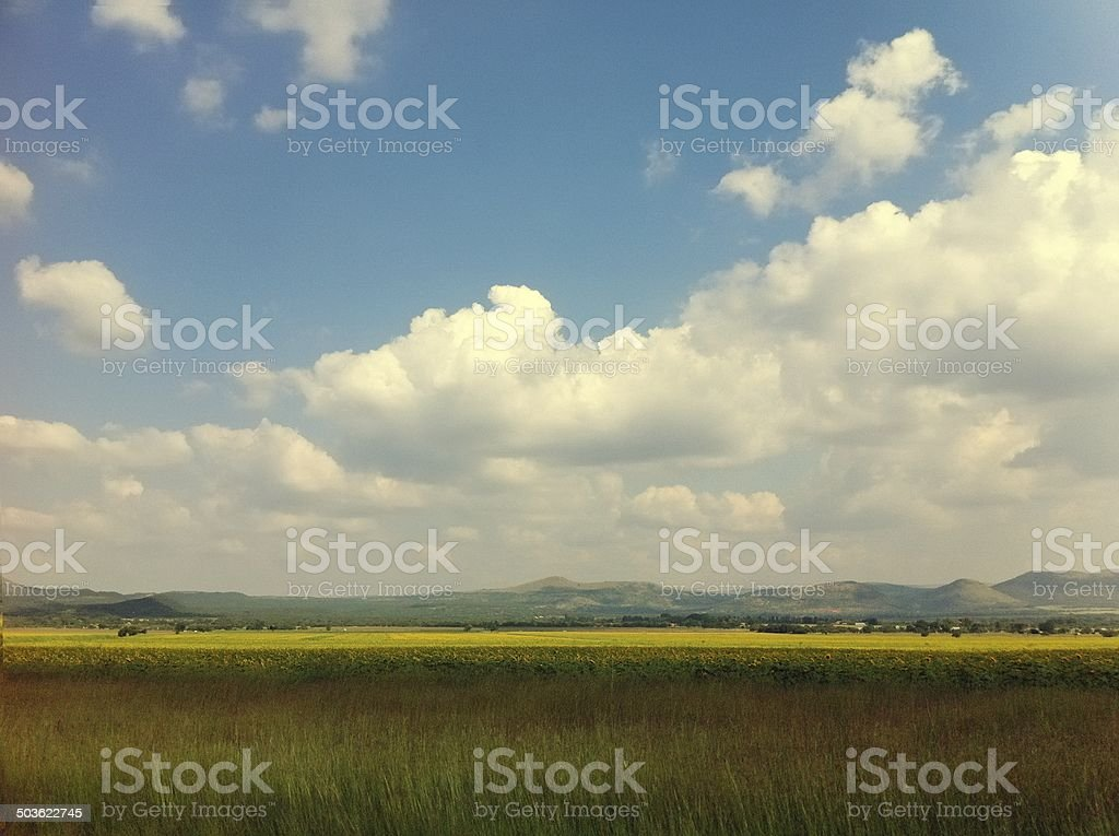 South African grasslands in Instagram style royalty-free stock photo