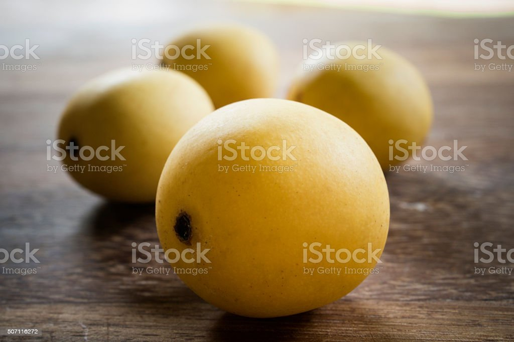 South African Marula Fruit stock photo