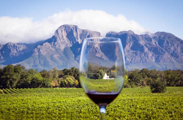 sudafricano wine country - república de sudáfrica fotografías e imágenes de stock