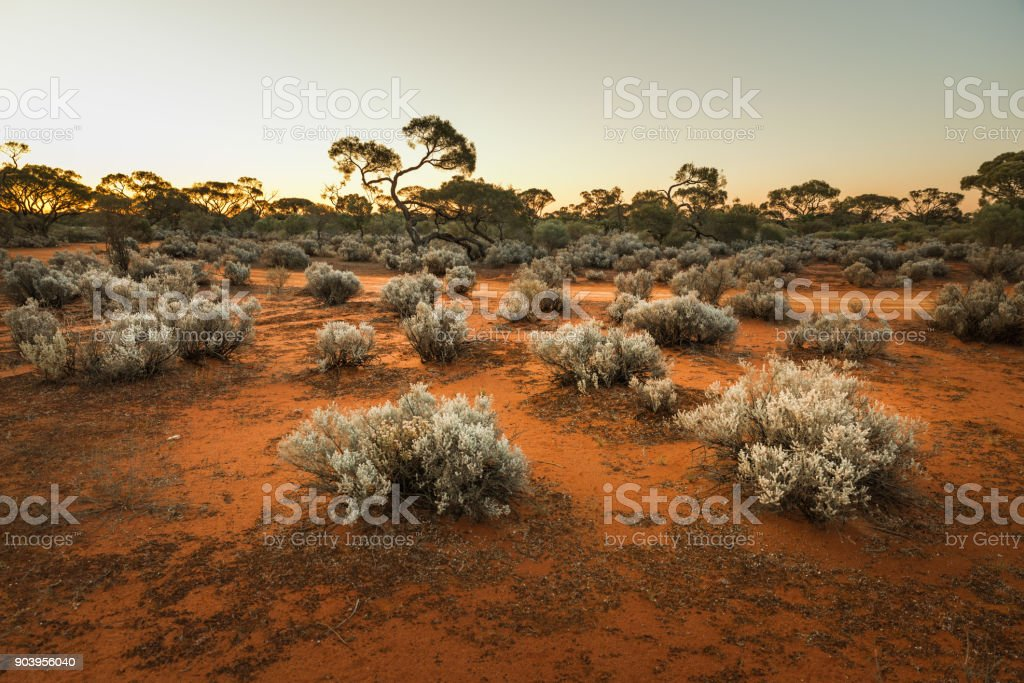 South Australian outback Landscape at sunset stock photo