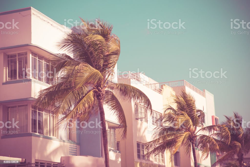 South Beach Palms and Art Deco bildbanksfoto